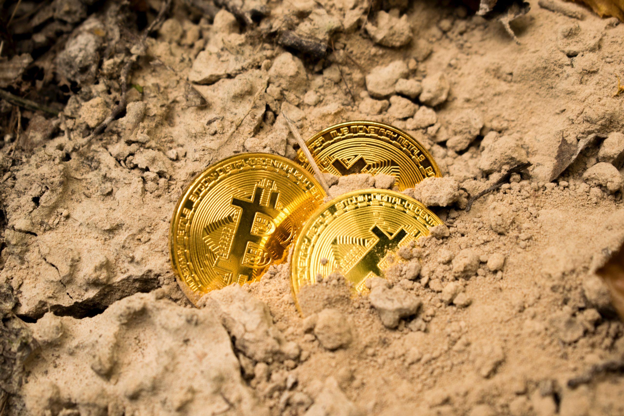 Report Bitcoin Scams